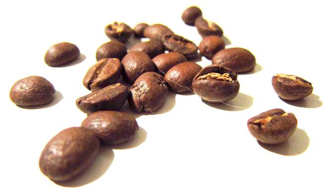 Caffè Diego fasi di lavorazione